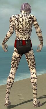 Necromancer Elite Scar Pattern Armor M gray back