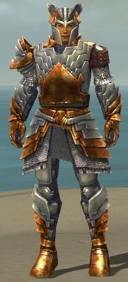 File:Warrior Templar Armor M dyed front.jpg