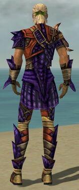 Ranger Elite Drakescale Armor M dyed back