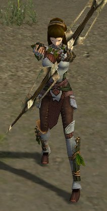 File:Ranger-female-skill-animation-long2.jpg