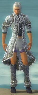 Elementalist Elite Iceforged Armor M gray chest feet front