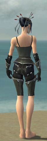 File:Necromancer Tyrian Armor F gray arms legs back.jpg