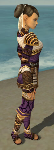 File:Monk Elite Canthan Armor F dyed side.jpg