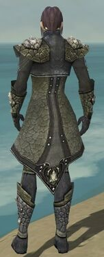 Elementalist Elite Stoneforged Armor M gray back