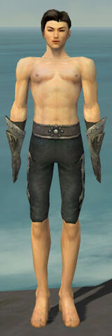 File:Elementalist Flameforged Armor M gray arms legs front.jpg