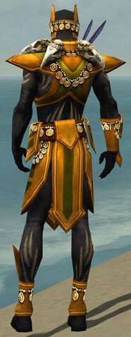 File:Ritualist Elite Kurzick Armor M dyed back.jpg