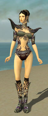 Ritualist Obsidian Armor F gray chest feet front