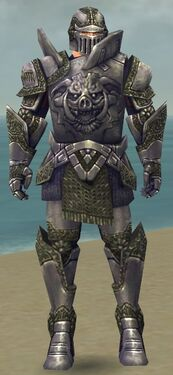 Warrior Platemail Armor M gray front