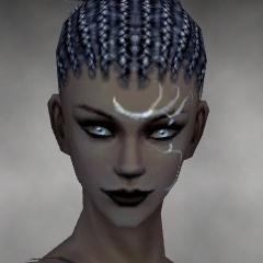 File:Necromancer Vabbian Armor F gray head front.jpg