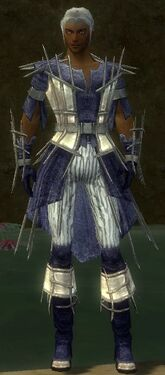 Elementalist Primeval Armor M dyed front