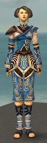 File:Monk Canthan Armor F dyed front.jpg