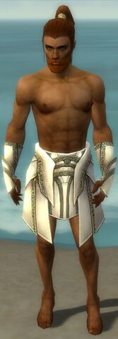 File:Paragon Asuran Armor M gray arms legs front.jpg
