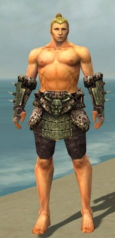 File:Warrior Elite Charr Hide Armor M gray arms legs front.jpg