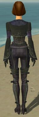 Mesmer Elite Rogue Armor F gray back