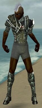 Necromancer Fanatic Armor M gray chest feet front