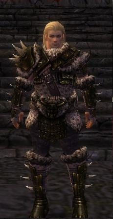 File:Warrior Elite Charr Hide Armor M nohelmet.jpg