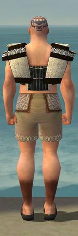 File:Monk Elite Sunspear Armor M gray chest feet back.jpg