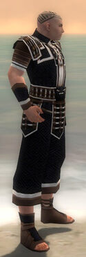 Monk Elite Judge Armor M dyed side