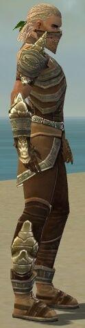 File:Ranger Asuran Armor M gray side.jpg