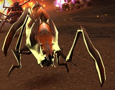 File:Spider Matriarch.JPG