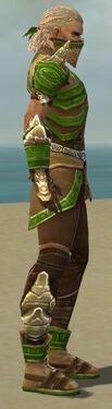 Ranger Asuran Armor M dyed side