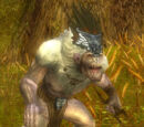 Grawl Invader