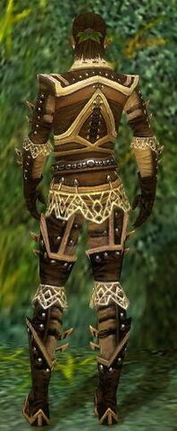 File:Ranger Elite Kurzick Armor M gray back.jpg