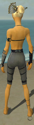 File:Assassin Shing Jea Armor F gray arms legs back.jpg