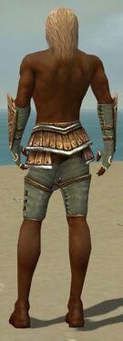 Ranger Shing Jea Armor M gray arms legs back