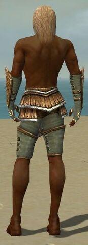 File:Ranger Shing Jea Armor M gray arms legs back.jpg