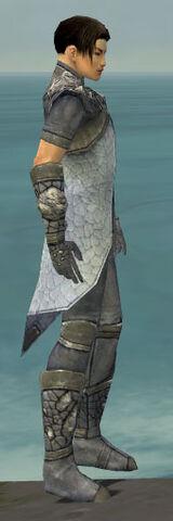 File:Elementalist Stoneforged Armor M gray side.jpg