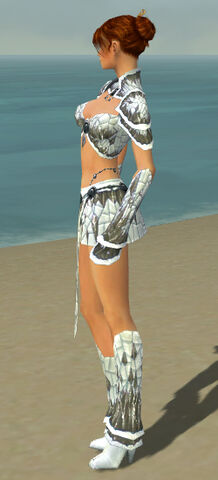 File:Elementalist Elite Iceforged Armor F gray side.jpg