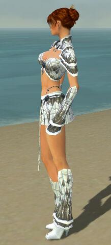 File:Elementalist Elite Iceforged Armor F gray side.jpg