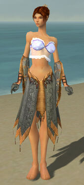 Elementalist Vabbian Armor F gray arms legs front