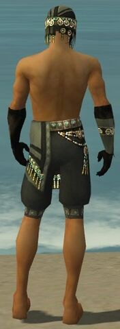 File:Ritualist Elite Luxon Armor M gray arms legs back.jpg