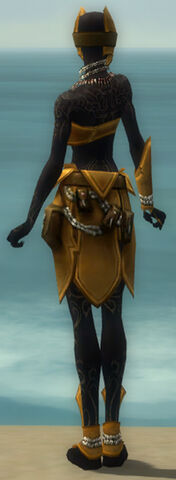 File:Ritualist Kurzick Armor F dyed back.jpg