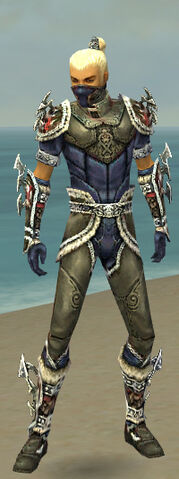 File:Assassin Norn Armor M gray front.jpg