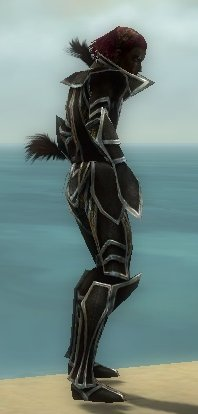 File:Necromancer Elite Sunspear Armor M Dyed Profile Right.jpg