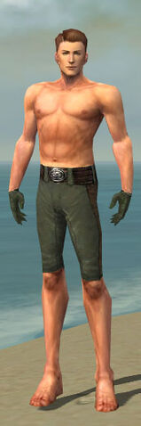 File:Mesmer Enchanter Armor M gray arms legs front.jpg