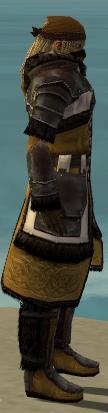 File:Ranger Norn Armor M dyed side.jpg