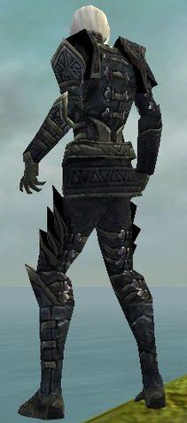 File:Necromancer Elite Cultist Armor M gray back.jpg