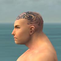 File:Monk Primeval Armor M gray head side.jpg