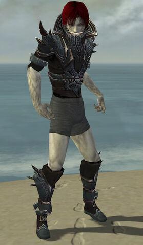 File:Necromancer Asuran Armor M gray chest feet front.jpg