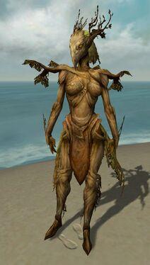 Melandru Avatar front