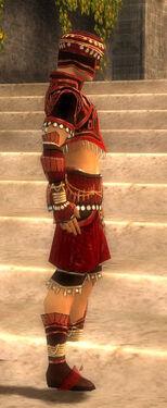 Ritualist Vabbian Armor M dyed side