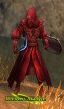 Whispers Acolyte