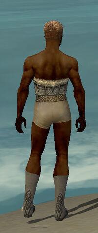 File:Dervish Norn Armor M gray chest feet back.jpg