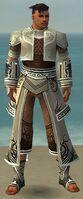 Monk Deldrimor Armor M gray front