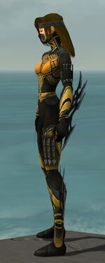 Assassin Vabbian Armor F dyed side