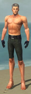 Mesmer Elite Elegant Armor M gray arms legs front
